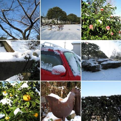 100202-雪が降った1-1